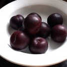 William Carlos Williams, Baked Plums, & Jam