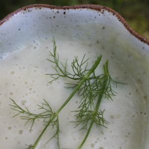 Creamy Fennel, Garlic, Onion & Potato Soup & Spinning My Wheels & Free Diapers