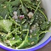 Kale Salad with Apples, Red Onion, & Sunflower Seeds & Stopping Time
