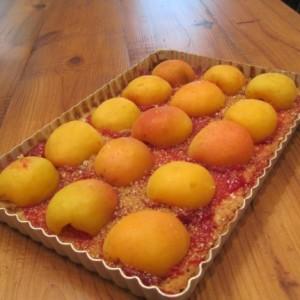 Double Apricot Tart (wheat-free, nut-free, gluten-free) & Friendship