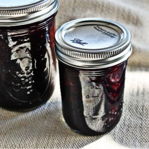 Quick, Single-Batch Blueberry Jam